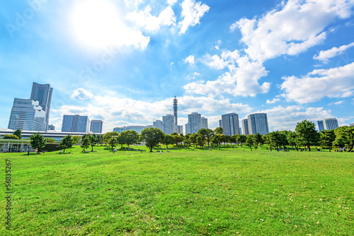 Foto  Landscape grass prospects the Yokohama city buildings