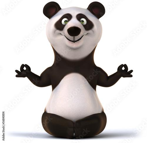 Fotografia, Obraz  Zen panda