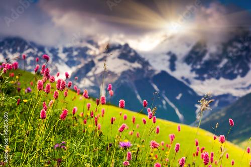 Keuken foto achterwand Lavendel mountain landscape