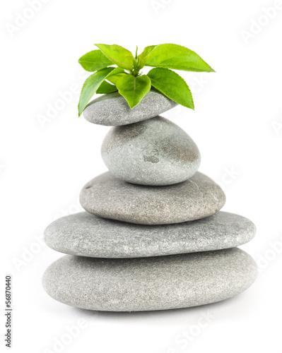 zrownowazone-kamienie-spa-z-roslina