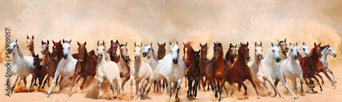 Fototapeta Horses herd running in the sand storm obraz