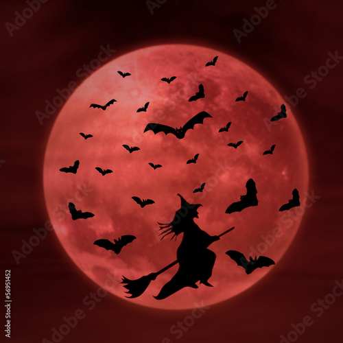 Spoed Foto op Canvas Bruin Halloween background of witch on full moon