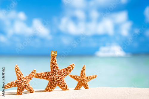 starfish  with ocean , beach and seascape Canvas Print