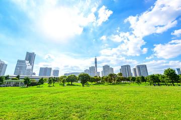 Fototapeta Landscape grass prospects the Yokohama city buildings in Japan