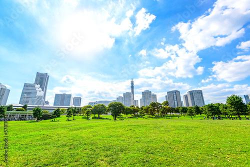 Fotografia, Obraz  Landscape grass prospects the Yokohama city buildings in Japan