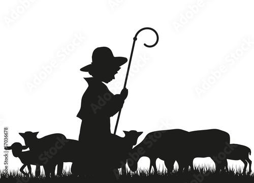 Obraz na plátně Hirte und Schafe