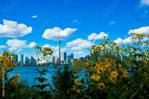 Deurstickers Toronto Toronto Skyline on a Beautiful Day