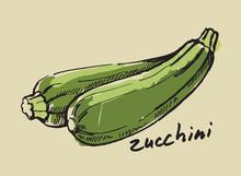 Hand Drawn Zucchini