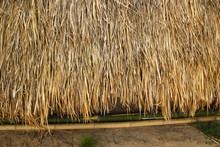 Grass Thatched Roof House In R...