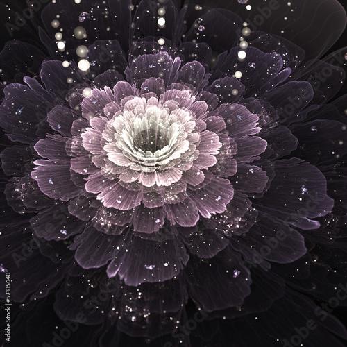 fractal-fioletowy-kwiat-z-kropelek-wody