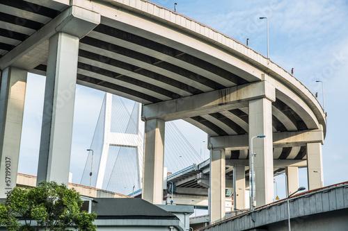 Shanghai urban landscape, Nanpu Bridge Crossing the River Poster