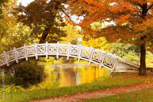bunter Herbsttag
