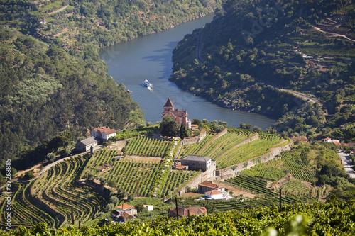 Tuinposter Wijngaard Douro Valley