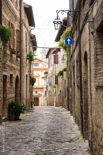 Fototapeta Romantyczna aleja we Włoszech na zamówienie