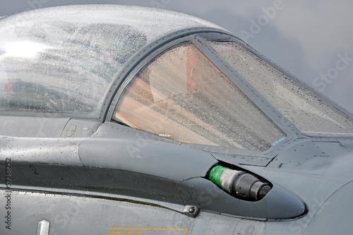 Plakat myśliwiec kabinowy