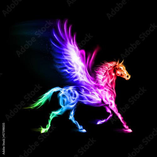 Stampa su Tela Colorful fire Pegasus.