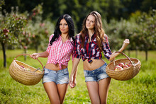 Sexy Women Carrying Baskets Of Apples