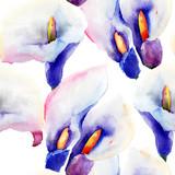 Wzór z kwiatami Calla Lily - 57455698
