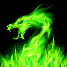 Fire Dragon.
