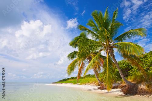 Summer at a tropical paradise in Florida Keys, USA