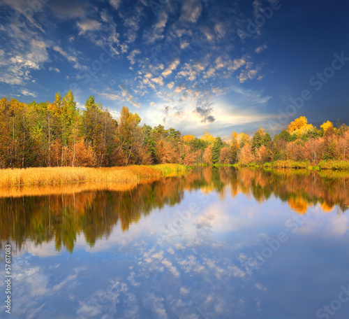 Fototapety, obrazy: Autumn scene on lake