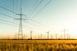 Leinwandbild Motiv Strommasten, Kornfeld und Windräder im herbstlichen Gegenlicht
