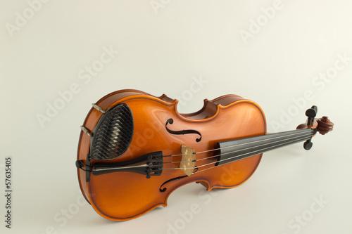 Fotografie, Obraz  Violino