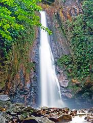 Fototapeta Wodospad Milton (Syndicate) Falls