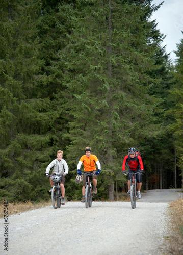 Foto op Plexiglas Fietsen Gruppe Mountainbiker auf Forstweg