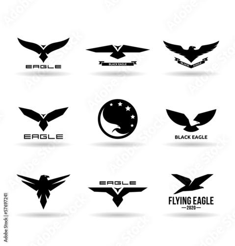 Photo  Eagles (9)