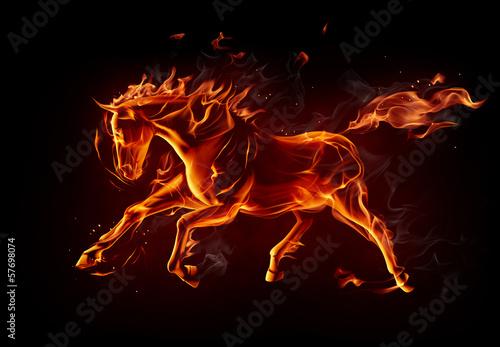 Fototapety, obrazy: Fiery horse