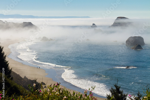 Tuinposter Kust morning fog along coast at Brookings, Oregon