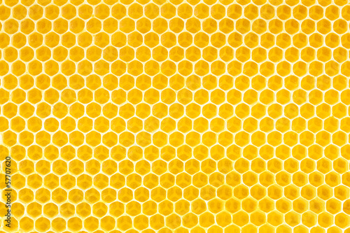 Stickers pour portes Bee honey in honeycomb background