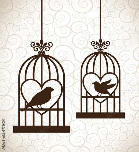 Recess Fitting Birds in cages valentines day