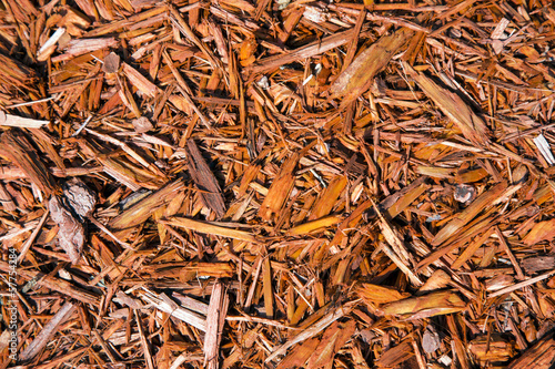 Fotografia, Obraz  Background of natural wood shavings