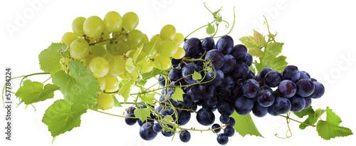 kiscie-winogron