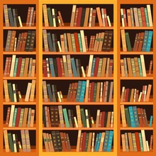 Large Bookcase With Different ...