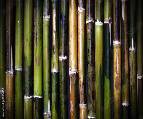 stare-bambusowe-tekstury