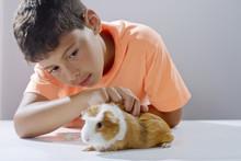 Niño Viendo A Su Mascota, Un Acure O Cobayo