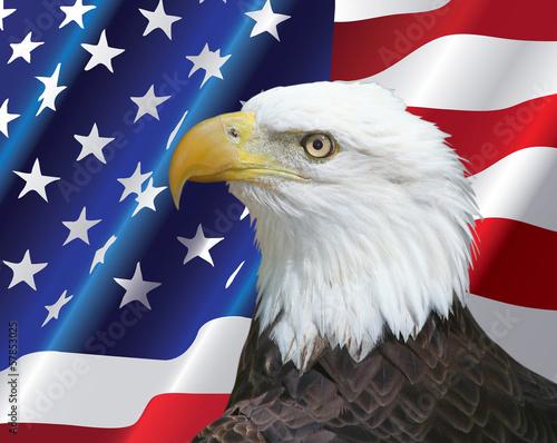 Deurstickers Eagle Bald Eagle portrait with USA flag Background