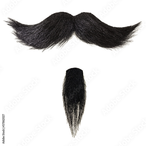 Stampa su Tela Mustache and goatee beard isolated on white