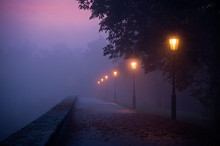 Empty Footpath In Morning Mist With Colored Sky Visible