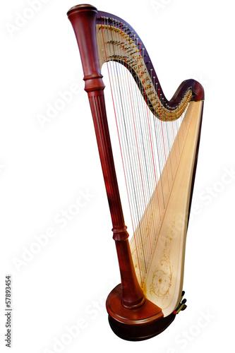 Cuadros en Lienzo harp