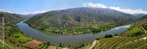 Fotografie, Obraz  Valley of river Douro with vineyards (Portugal)