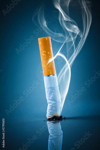 Fotografie, Obraz  Cigarette butt - No smoking.