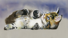 Watercolor Animal Collection: Cat