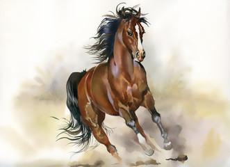 FototapetaRunning horse