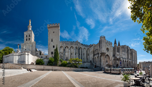 Photo Great panoramic view of Palais des Papes and Notre dame des doms