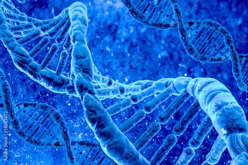 Fotografia  human DNA