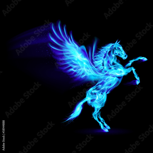 Canvas Print Fire Pegasus.
